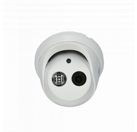ST-171 M IP HOME POE H.265 (3,6mm)